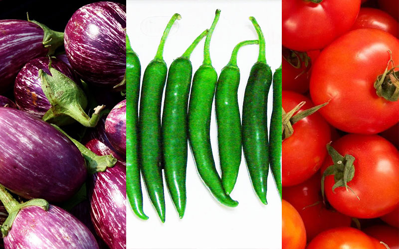 Crops that we can plant in the garden